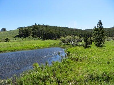 Bighorn Field Site
