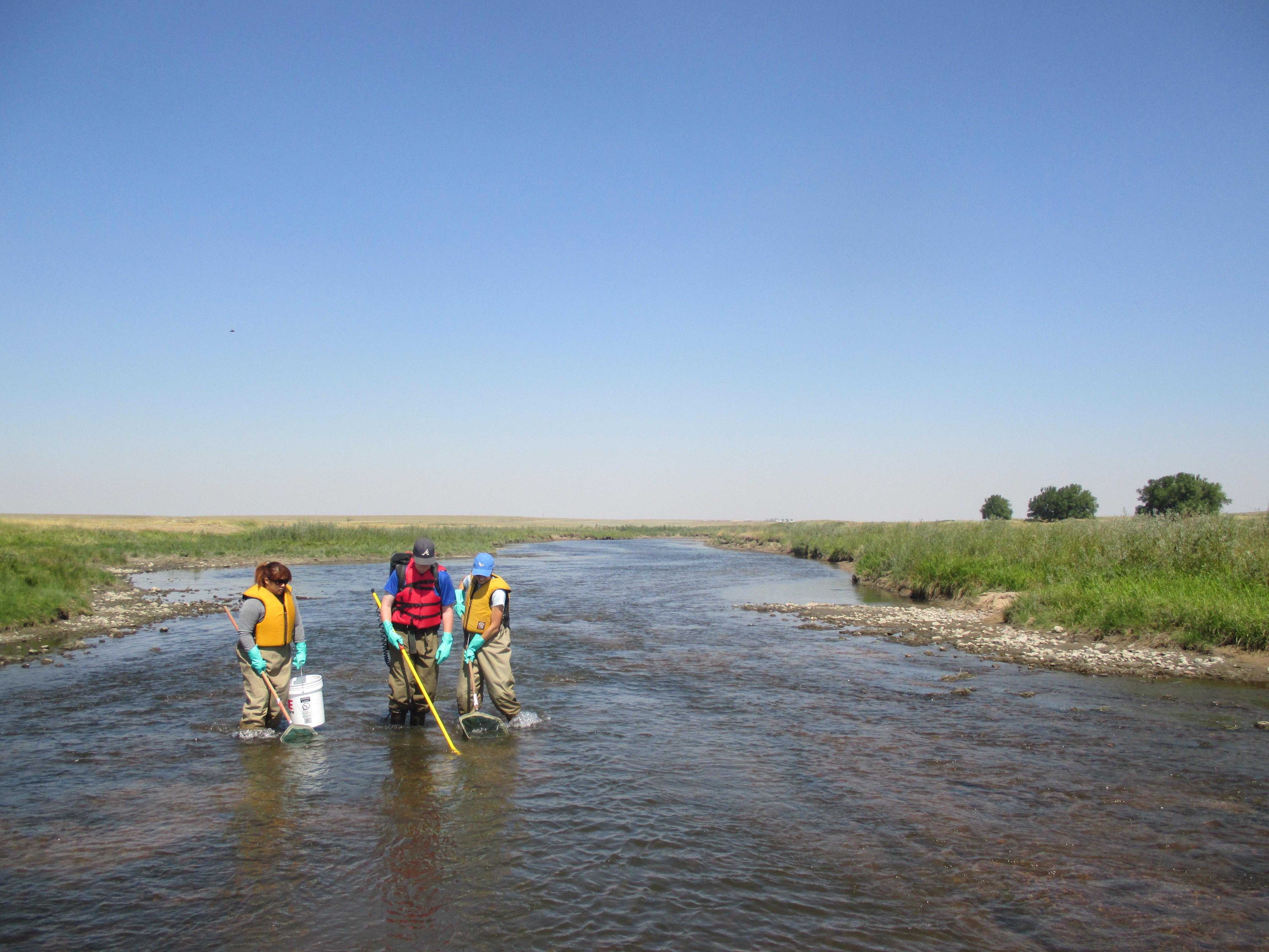Electrofishing Laramie River