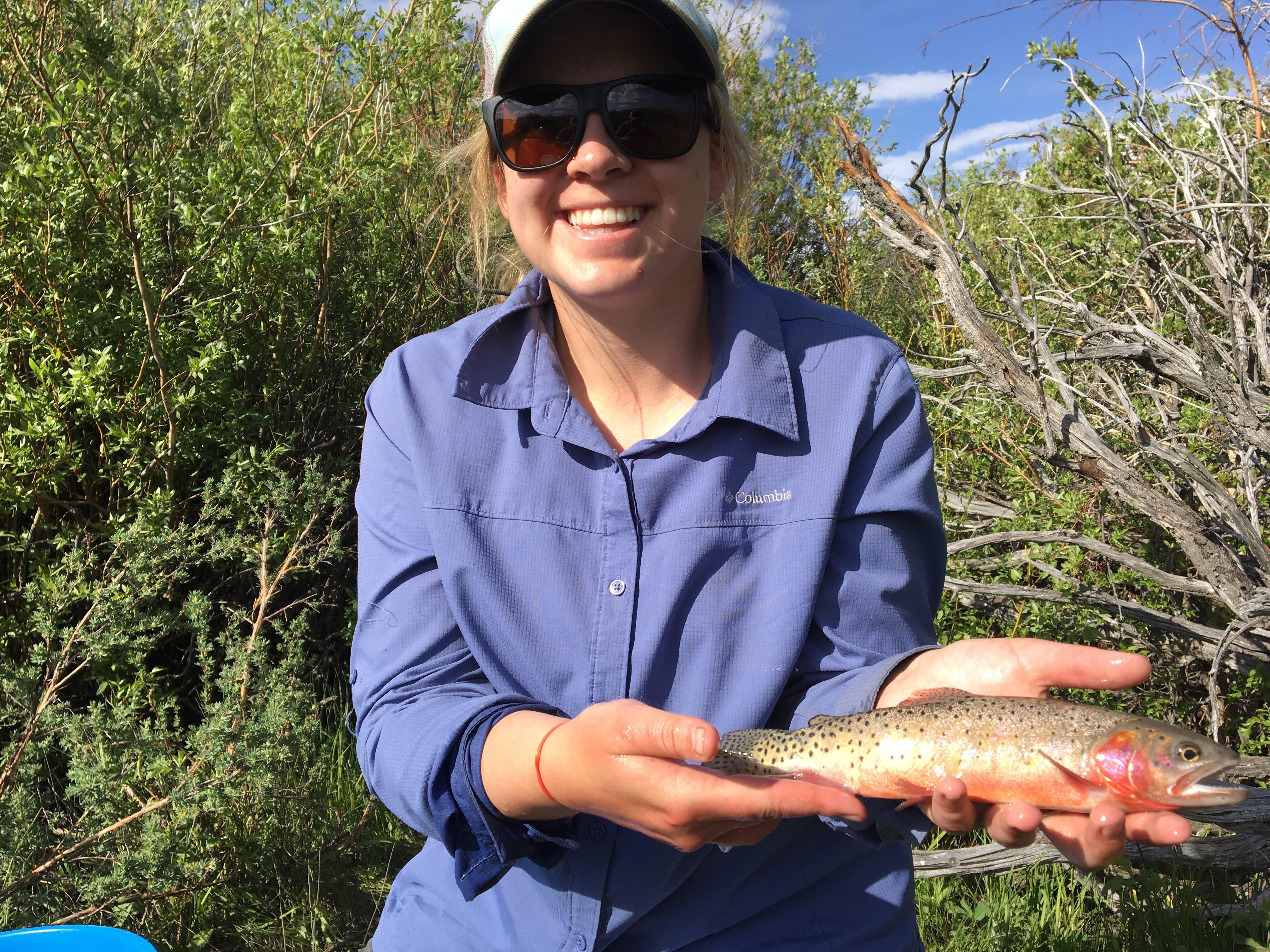 Colorado River cutthroat trout