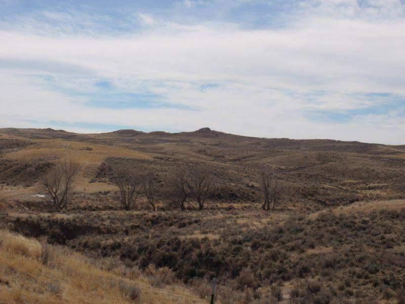 Typical raptor nesting habitat along a riparian habitat in the Powder River Basin, WY.