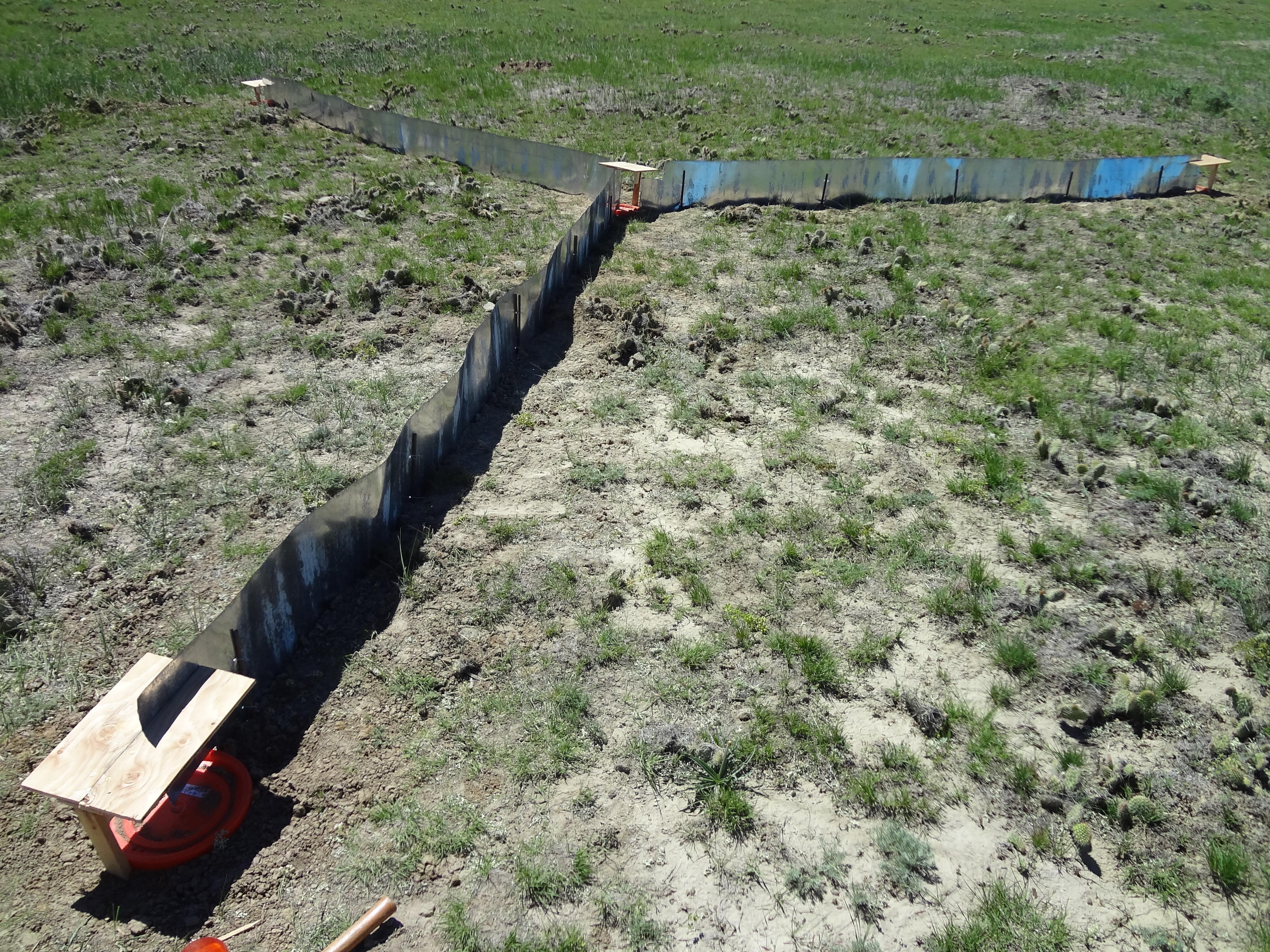 Pitfall trap array, Thunder Basin National Grassland, WY