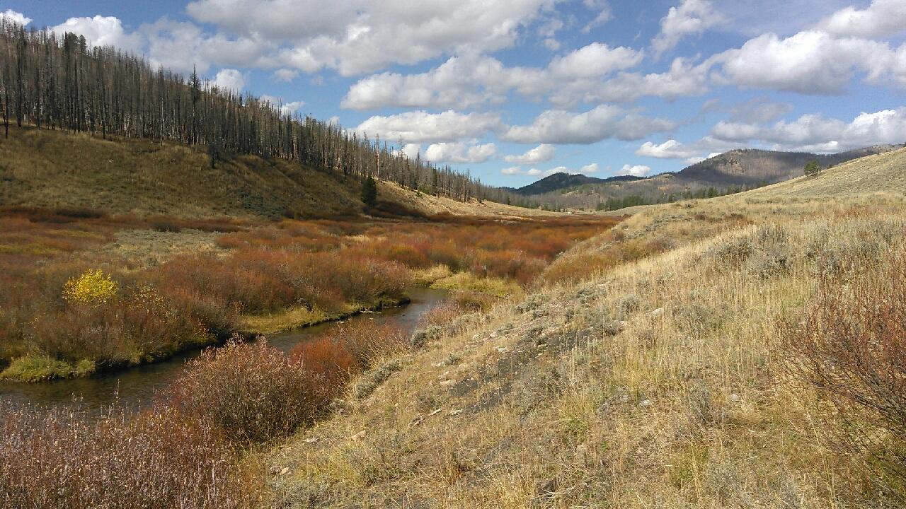 Main stem, LaBarge Creek