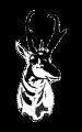 Kauffman Lab logo